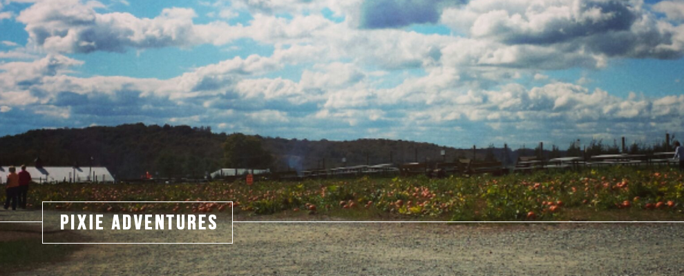 Autumn in NEPA: Roba's Corn Maze & the Bloomsburg Fair
